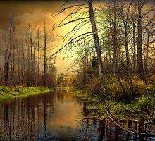 Turn of Dawn by Gary Smith