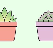 Baby Succulents by Moxie Graphics