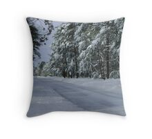 Snowed In! Throw Pillow