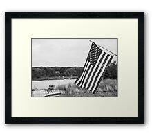 American Flag- Summer in B&W Framed Print