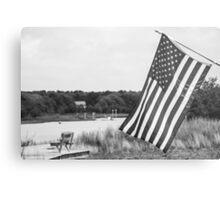 American Flag- Summer in B&W Metal Print