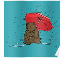 Drizzly Bear Poster