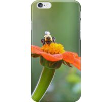 Honey Bee on Flower Photograph iPhone Case/Skin
