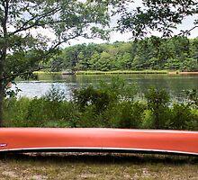 Canoe by Laura Cardello