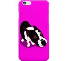 Mr Bull Terrier Pink iPhone Case/Skin