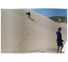Wild Adventure in the Dunes Poster