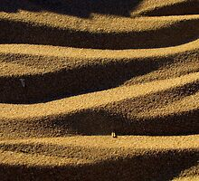 Sand and shadows by michele1x2
