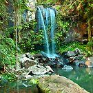 Curtis Falls Mt Tamborine by Andrew Bodycoat