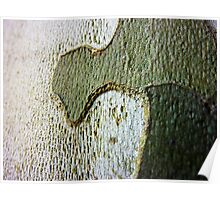 Where Green Land Meets Grey Sea - Plane Tree Bark Poster