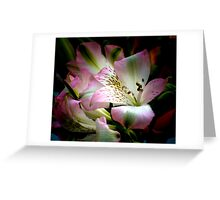 RICH IN COLOR VENETIAN LILY Greeting Card