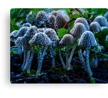 Bed of Mushrooms Canvas Print
