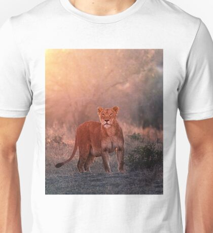 Searching For Cubs T-Shirt