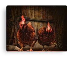 Don't mess with us ~ Canvas Print