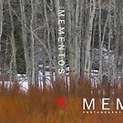 Mementos Book Jacket by redtree
