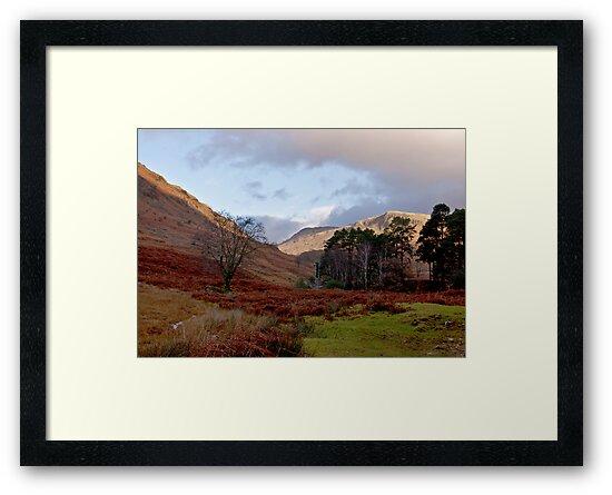 The Beauty of Wasdale by Trevor Kersley