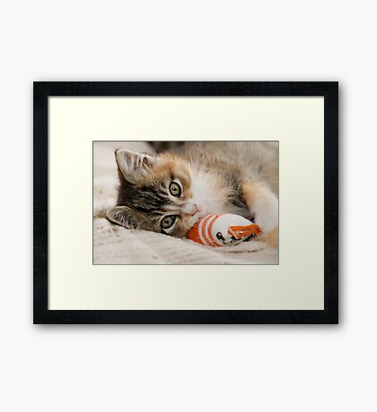 Mallory and her Toy Sock Framed Print