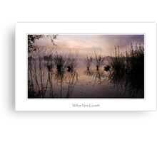 Willow New Growth, Petersfield Canvas Print