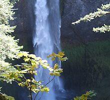 Salt Creek Falls - Oregon by AmyBuchmeier