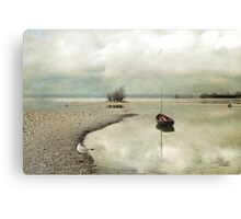 Winter Morning by the Lake Canvas Print