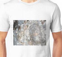 DRIFTWOOD STUDY 5 Unisex T-Shirt