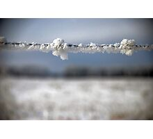 frost on barbed wire Photographic Print