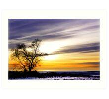 A Winters Sky Art Print