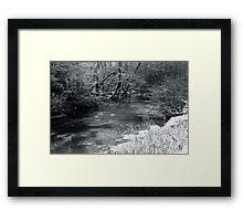 2010 river martin blarney Framed Print