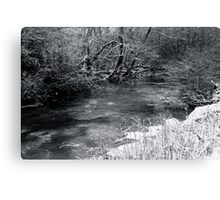 2010 river martin blarney Canvas Print