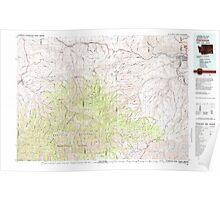 USGS Topo Map Washington Clarkston 240545 1981 100000 Poster