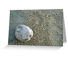 Mission Beach Cocoanut And Crab Balls Greeting Card