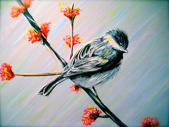 The Chickadee by Allie Keech