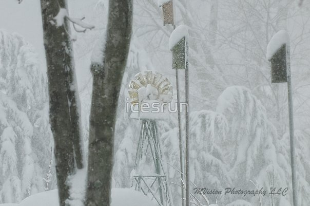 ANOTHER SNOW SCENE TAKEN by MVision PhotographyLATE 2009 SNOW IN MARYLAND by icesrun