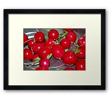 Merry Christmas RED BUBBLE! Framed Print