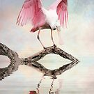 Mirror, Mirror ---- by Tarrby