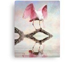 Mirror, Mirror ---- Canvas Print