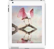 Mirror, Mirror ---- iPad Case/Skin