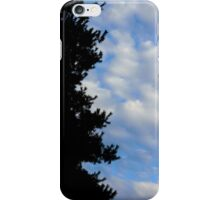 Shadow in the Sky iPhone Case/Skin