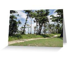 North Mission Beach Path 26 Jan 2012 Greeting Card