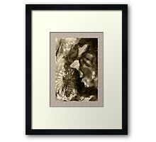 Festive Lady Framed Print