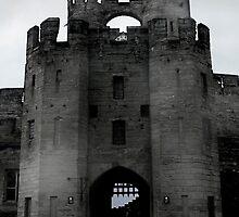 Warwick Castle by Nigel Donald