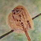 A Fluffy Sparrow by AngieDavies