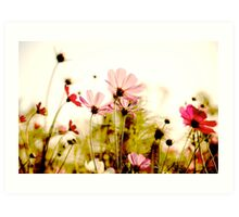 Delicate: Sold Feb 28,2011+SOLD 2014: On Featured: Natural-color-and-light Group Art Print