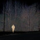 solitude by simia