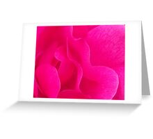 Ultra Pink Rose Greeting Card