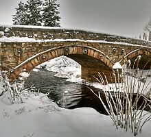 Bridge over the Moy Burn by donnnnnny