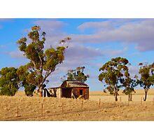 'lil hutt Photographic Print