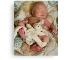 Forty Winks Canvas Print