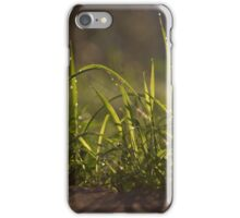 Tuscany sunrise  iPhone Case/Skin