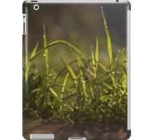 Tuscany sunrise  iPad Case/Skin