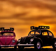 Love bugs by jerseygallery